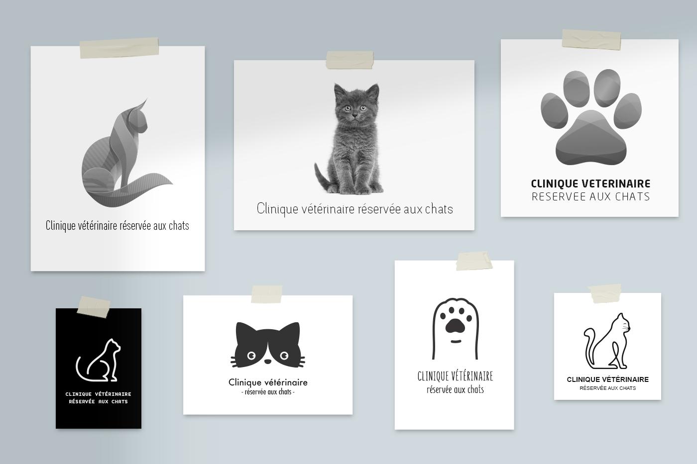 Présentation site internet Clinique réséervée aux chats
